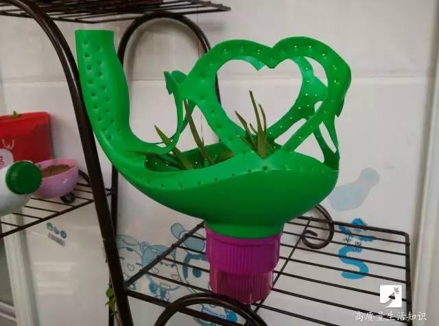小編想你們所想 上次的飲料瓶改造后 就有朋友問怎么diy成花盆 這不就圖片