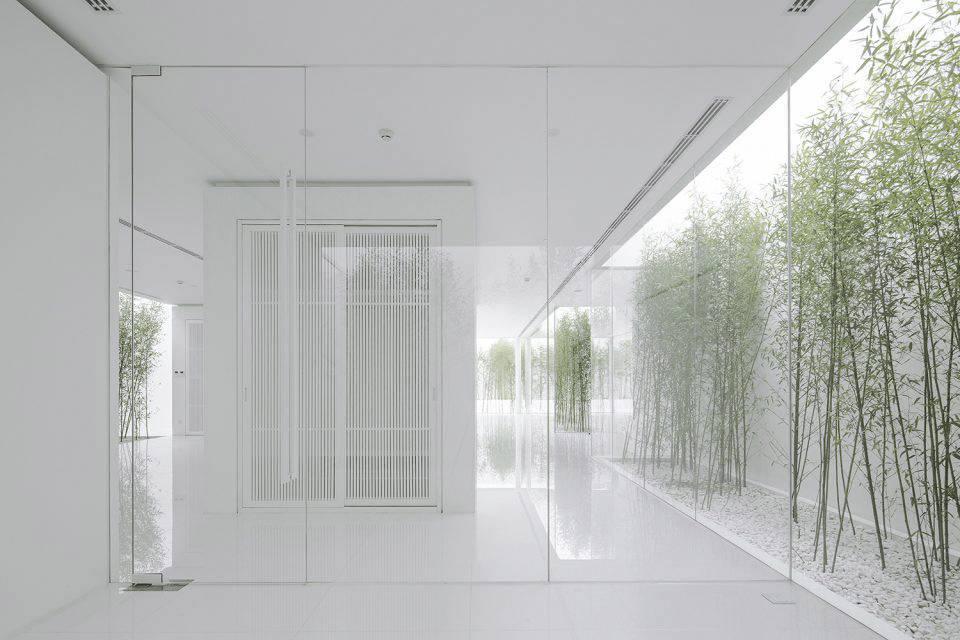 ▼环绕建筑的天井和天窗模糊了室内外的关系,带来了全方位自然采光图片