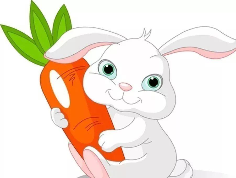 逼真手绘兔子石头画