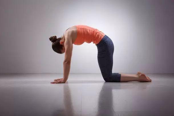 瑜伽体位上百种,不管哪一派,这5招必学!图片