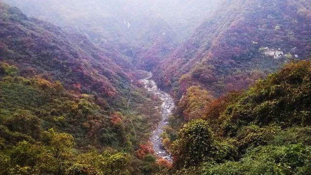 会员日专享a线丨净业寺穿越青华山,寻佛赏秋