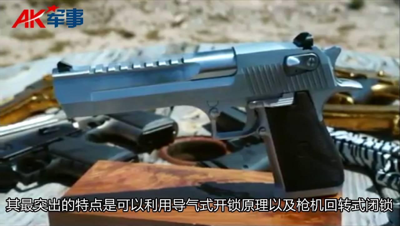 狩猎高手沙漠之鹰 强大的火力 有效的射程 堪称手枪之