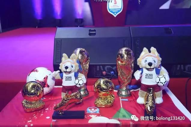 获得俄罗斯世界杯大力神杯,足球,球鞋,吉祥物