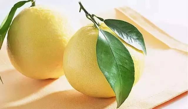 【创意手工】柚子绘画大赛获奖名单!图片