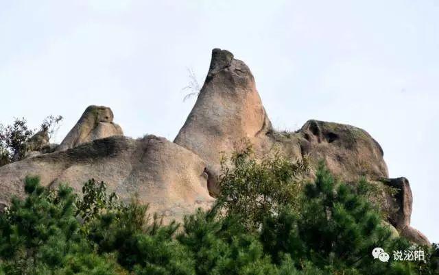 马谷田有个山叫老母洞,你听说过吗(图23)