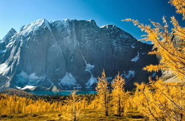 在列治文普通的鄉間小道,濃烈的秋景會讓平凡的風景變得熠熠生輝.