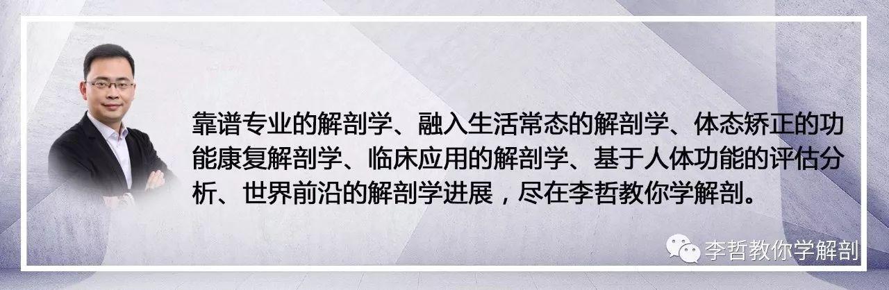 """""""杂货店""""小米和雷军的平台梦: 从智能手机到""""小米杂货店"""""""