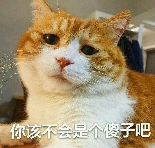 上海新南洋股份有限公司关于签署募集资金专户存储三方监管协议的公告