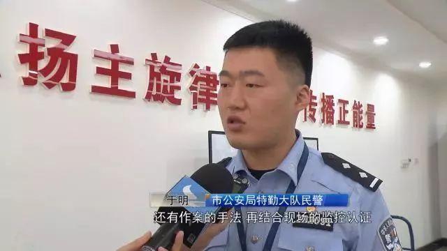 湛江市众多媒体人到廉江市新民镇文秀岭农牧场摘果品羊
