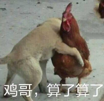 """亚裔诉哈佛招生歧视案牵出秘密""""Z名单"""" 舆论爆炸"""