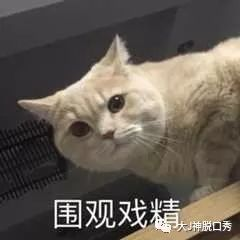 """广西陆川县一男子为生小孩,竟""""娶""""2个老婆供其……"""
