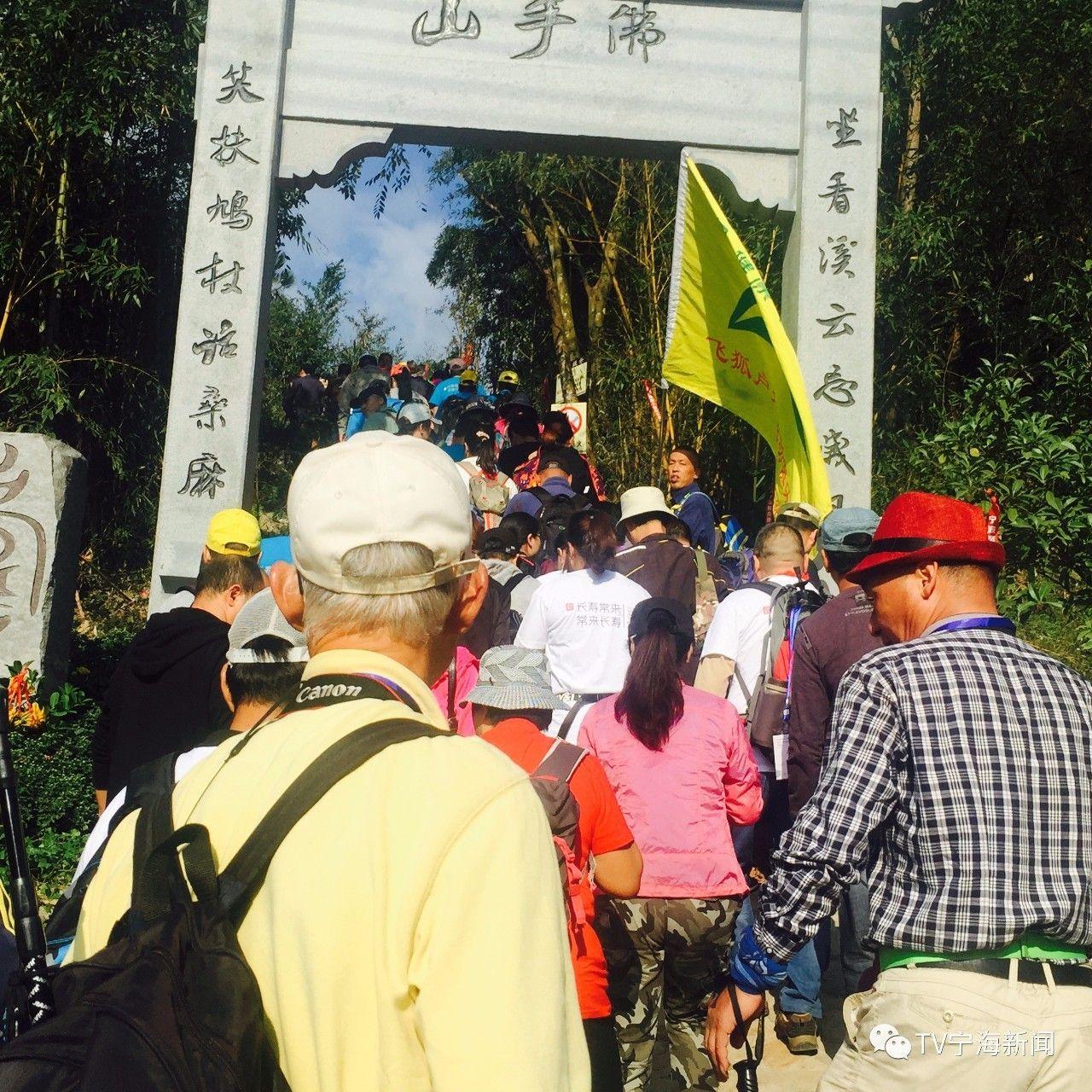 重庆实施农村本土人才回引计划 毕业生回乡带动群众致富