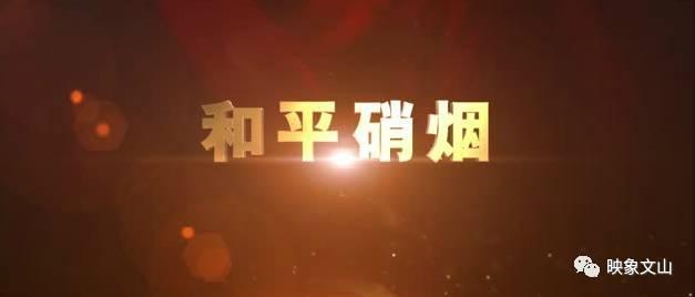 华府拍地之后,传南湖国际商业地块将再次拍卖