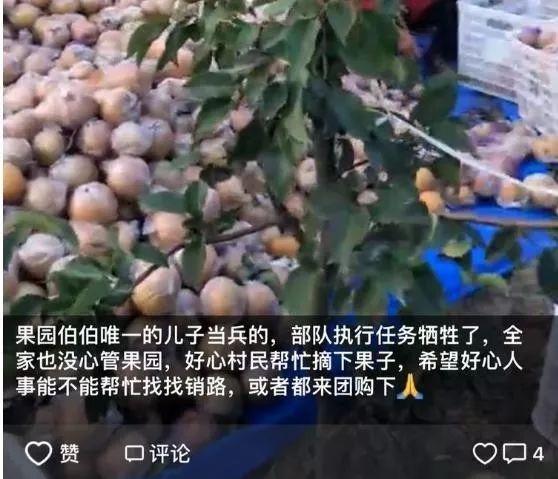 中秋节,全家出游好线路:泾阳菊花展+茯茶小镇一日游!