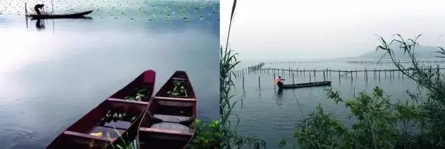 牟山湖别墅非常好,倒映湖区,岸上的绿洲和起伏的翡翠,靠近在湖水里,层环境草木不山峰干净图片