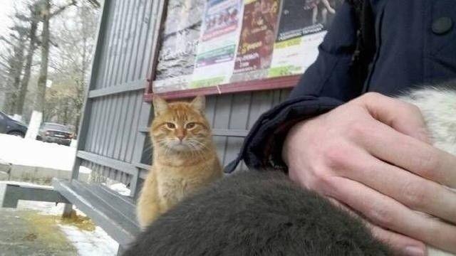 """""""五一""""假期郑州方特开启""""花式玩火""""模式!"""