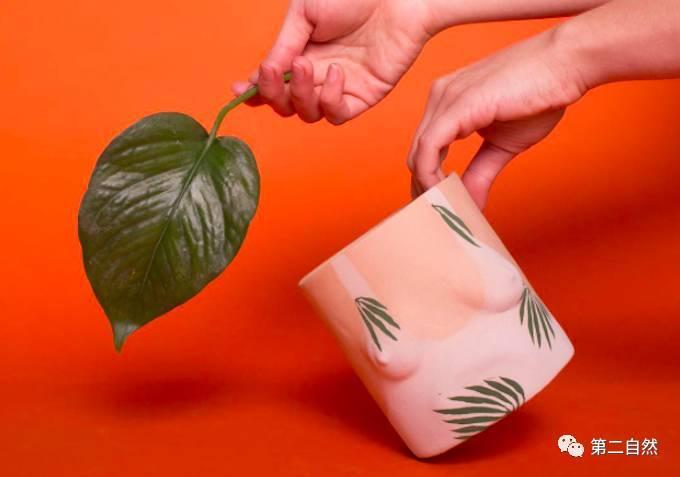 咪咪人体艺术爱人体_nichols 采用了古老的人体浮雕手法,将陶瓷植物盆做成了立体的艺术品.