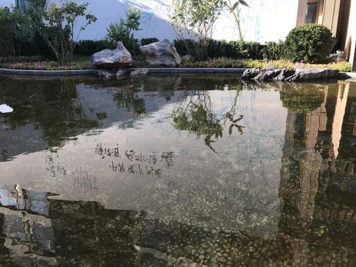 注意啦!今日起至10月10日,宁夏交警将严查这七类车!