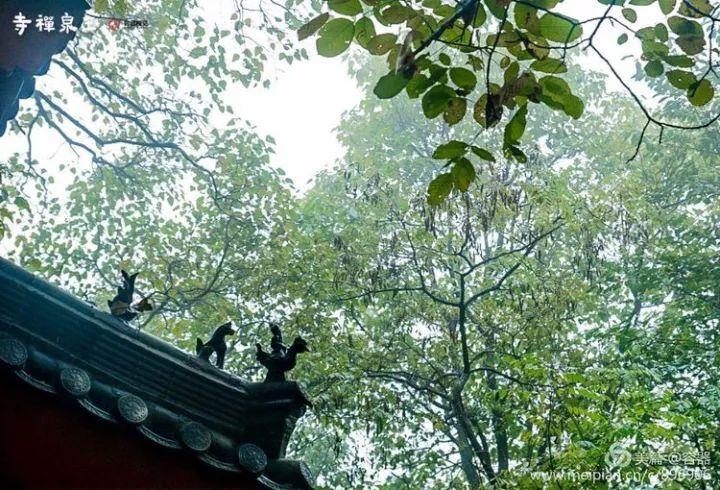 我不是雍正皇帝,一个无聊青年的遐想,竟然穿越到清朝当皇帝去了