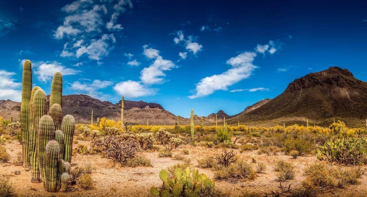 大�y�9�%9�._旅游 正文  西班牙的火山岛,加那利群岛的第四大海岛,资源丰富的生物