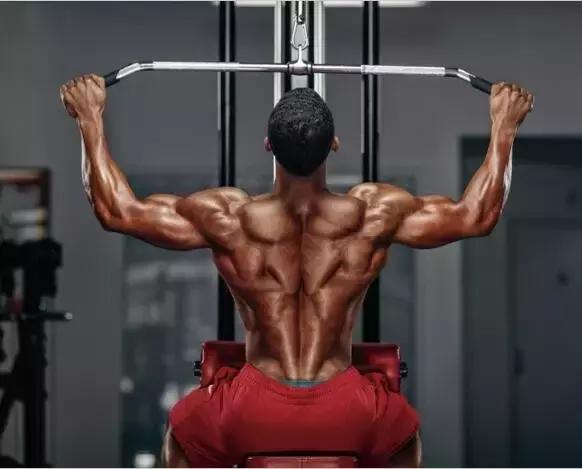 背部锻炼动作_背肌训练,让你唤醒背部肌群,离倒三角更近一步!