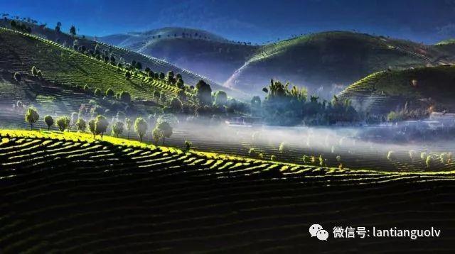《楚乔传》中美女云集,赵丽颖的百变造型如何艳压群芳?