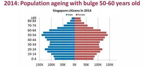 公民人口_专业角度剖析新加坡未来移民趋势,这结果绝对是你想要的