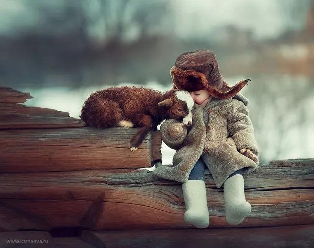 这些人与动物的小故事感动了朋友圈!看到第几个你哭了?