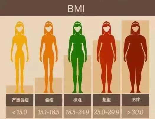 脂肪太多怎样减肥?
