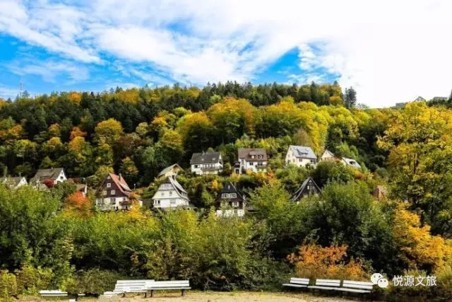 森林小镇|森林小镇建设优势明显潜力巨大图片