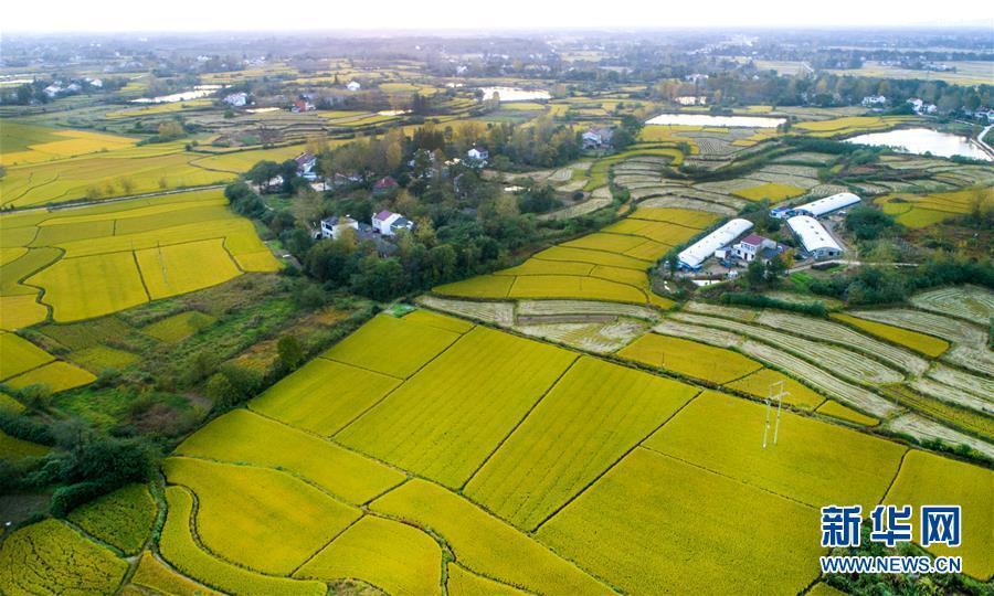 美丽中国――70年中国面貌变迁述评之八