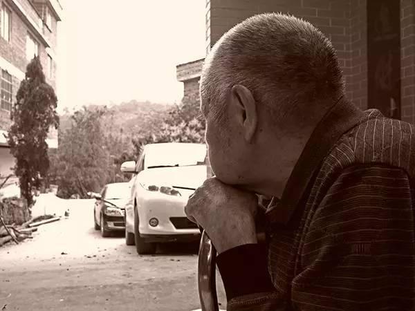 《南方有乔木》的现实意义:白百何的固执老爸是在影射谁?