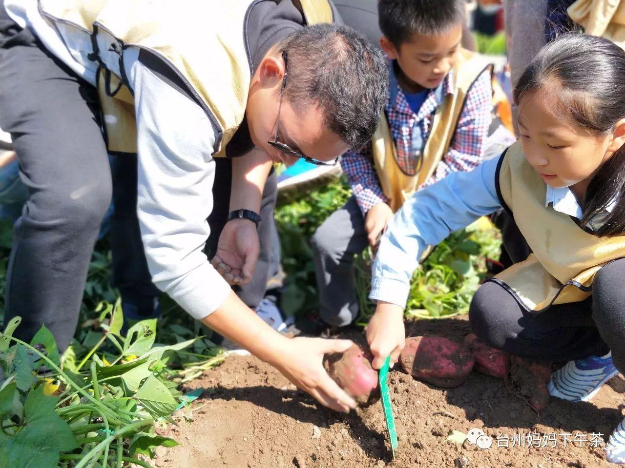 番薯学院_(www.fanshuxueyuan.com)_教育考试_三九网站目录