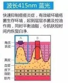 竟是这种人!刘涛竟然是二婚?闪嫁富豪王珂后竟然踹掉了前夫?