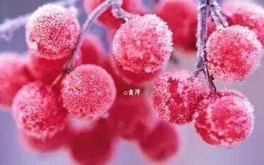 广誉远夏至养生节暨中国中医药文化走进中航信托
