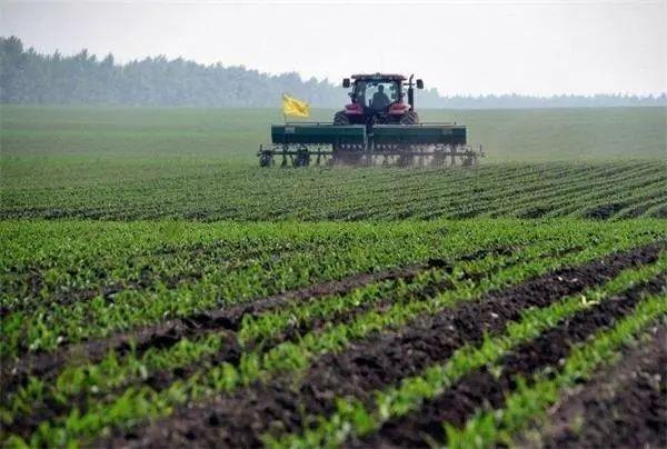 中央和市级财政投入补助资金,支持重庆开展农业生产社会化服务试点