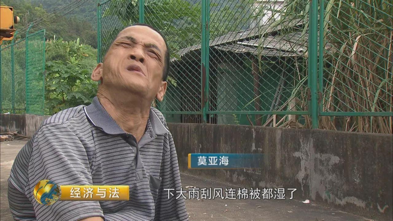 上海世外最受欢迎的阅读课老师刘晓:初中生如何具备自主阅读能力
