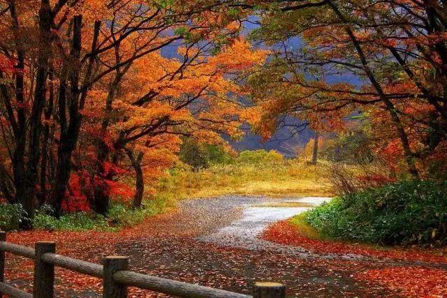 在失败面前不要流泪,失败只是暂时停止成功,你认为没有路的地方其实有路