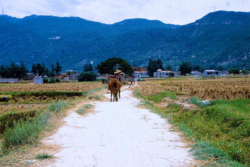 的照片_1981年中国农村老照片:图4让人羡慕,图6已经没有,图9