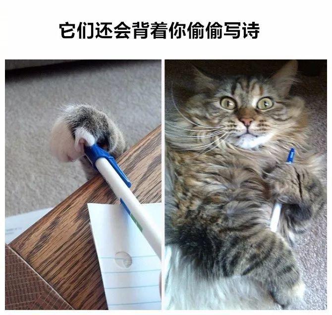 Han Kj?benhavn x PUMA 2018 春夏联名系列 Lookbook