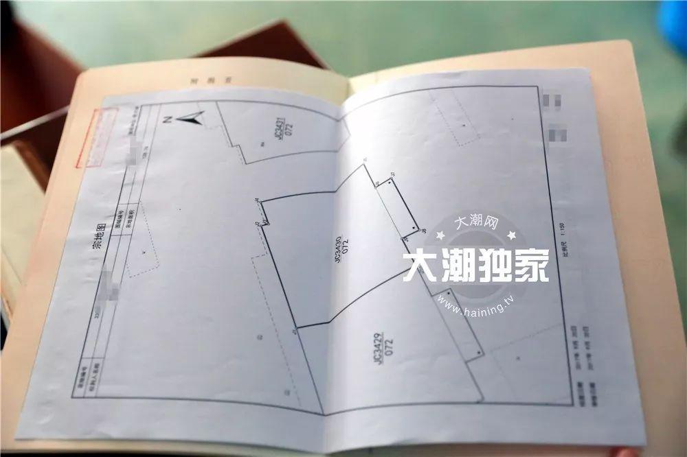 刘嘉玲封成龙做硬汉 在设计上老公梁朝伟给灵感秀恩爱