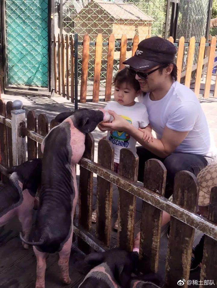 千万不要带爸妈去泰国旅游 看完网友的经历我惊呆了