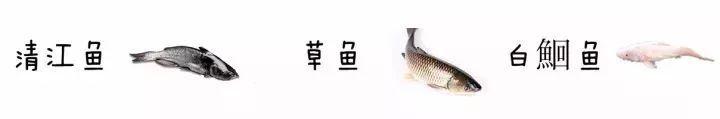 国乒女队主帅施之皓迎娶小22岁女弟子,大赛中雪藏郭跃,引争议