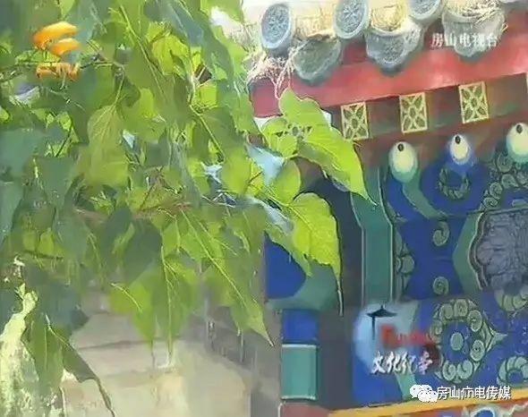 巡视组:云南肃清白恩培、仇和流毒不彻底,吉林有地方经济数据造假