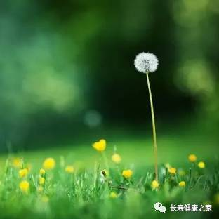 上海日料的几个小坑 你要是去吃记得绕过……