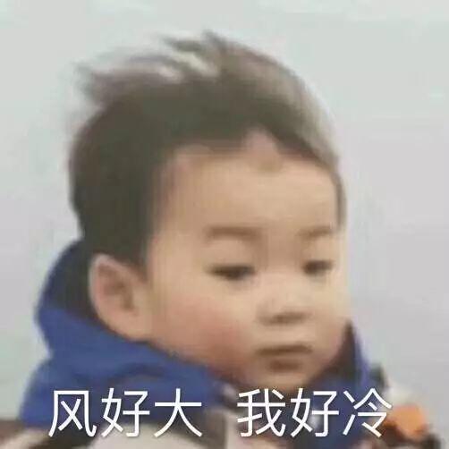 """小蜜蜂重出江湖,CALL客激增,杭州开发商大清货应对""""楼市灰犀牛""""?"""