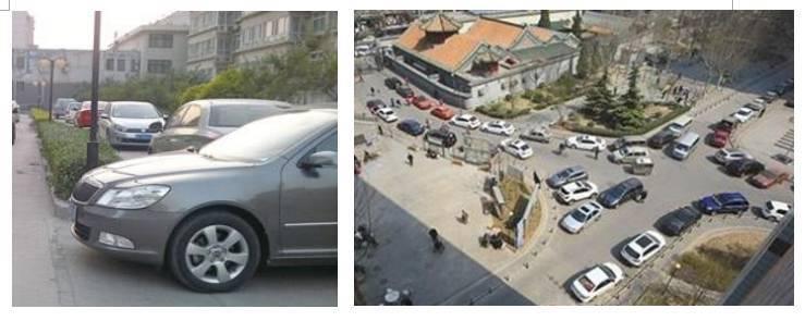 来自台湾的景观设计师妈妈,把植物园装进了上海的117㎡两室家