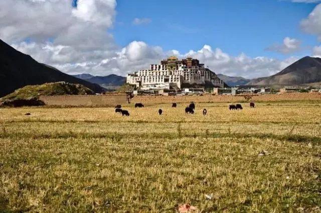 带大家参观我姐姐家300多万装修的别墅,真的很漂亮,有钱真好!