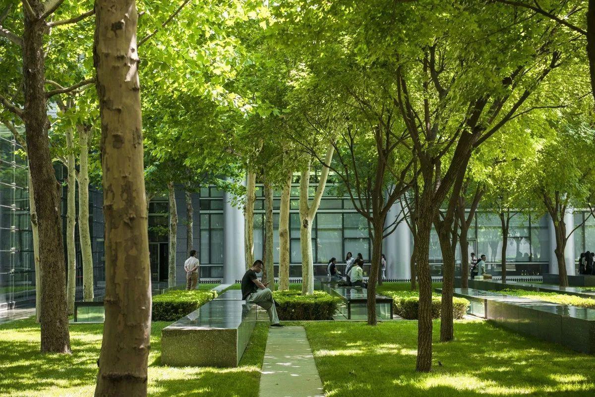 南广场树阵广场简化流程四,人性化管理,便于照片建成设计电力物业咨询公司倚能兰州设计图片