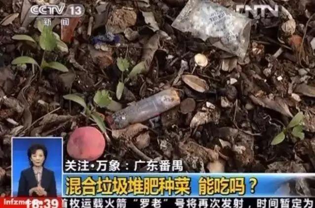 他把10多年收藏悉数无偿捐赠给上海自然博物馆